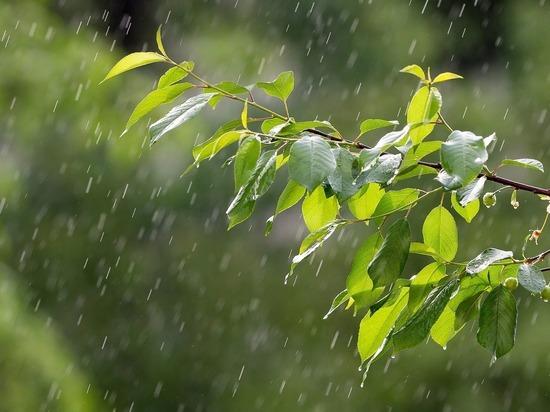 Сильным дождём подтопило 12 улиц Краснодара