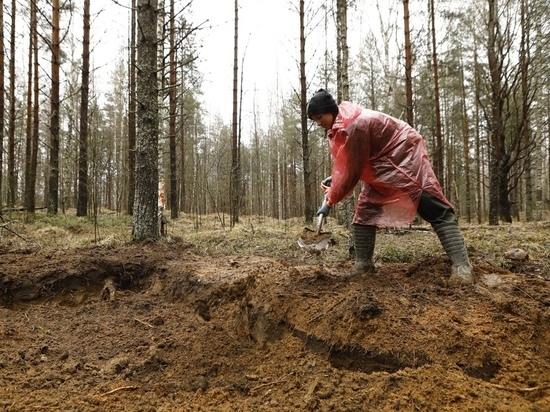 Поисковая экспедиция «Вороново-2021» длилась с 24 апреля по 8 мая