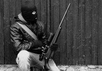 В России вновь бесчинствуют террористы, а на далеком Ближнем Востоке вновь обострилась «борьба за национальное освобождение»: боевые подразделения партии ХАМАС лупят ракетами по жилым районам Израиля