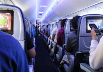 Общероссийское объединение пассажиров (ОПП) обратилось к главе Минтранса РФ Виталию Савельеву с предложением рекомендовать крупным авиакомпаниям ввести бонусы для пассажиров, которые сделали прививку от коронавируса