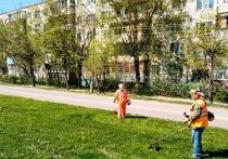 В Серпухове начался сезонный покос травы