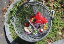 Наверняка вы неоднократно видели людей, копающихся в мусорных баках или собирающих остатки пищи со столов после посетителей уличных кафе