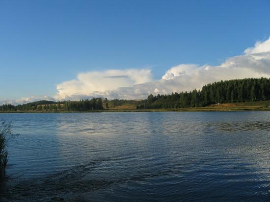 Тело мужчины обнаружили на берегу Псковского озера