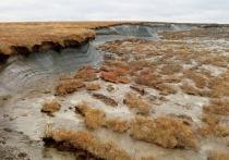 Первая в РФ лаборатория криологии Земли и геотехнической безопасности откроется в ЯНАО