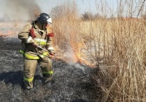 В Челябинской области погиб пожарный, тушивший камыш