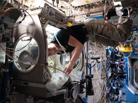С момента зачисления в отряд космонавтов до первого полета в космос придется подождать лет 6-7