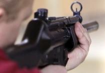 Думский Комитет по безопасности рекомендовал принять в первом чтении законопроект об ужесточении правил выдачи лицензий на приобретение оружия