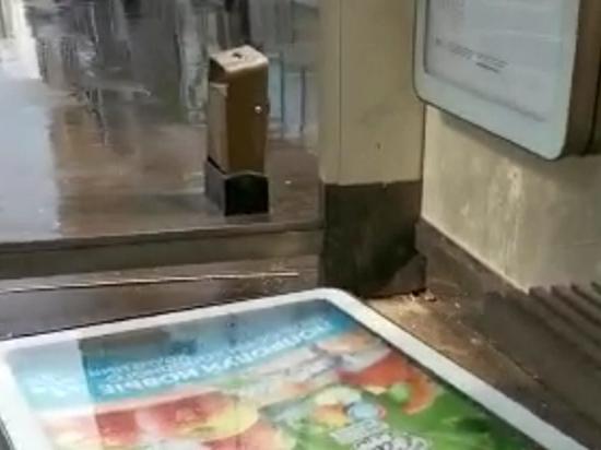 Первые жертвы непогоды зафиксированы в Москве