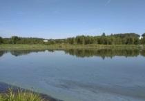 За два года четыре пруда расчистят в Серпухове