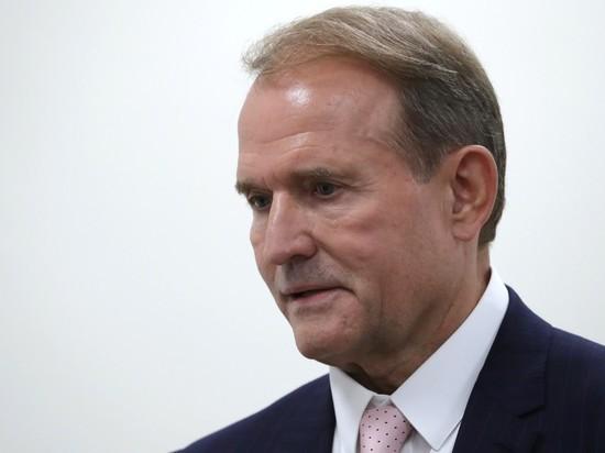 Медведчук заявил, что надеется на встречу Путина и Зеленского