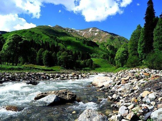 В горах Абхазии ищут группу российских туристов