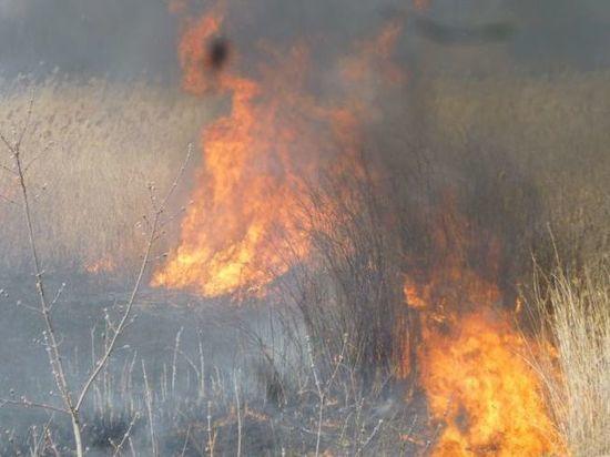 Власти двух северных районов Омской области ввели режим ЧС из-за пожаров