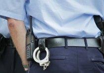 Молодой пскович попал в полицию из-за кражи спиртного