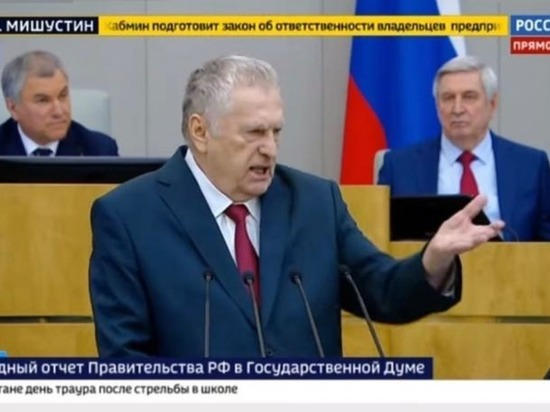 """Владимир Жириновский назвал сочинцев """"идиотами"""" и """"больными людьми"""""""
