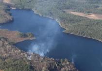 Шесть гектаров горящего леса потушили пожарные Карелии за сутки
