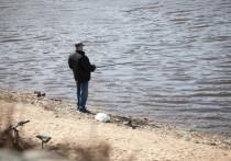 В Печорском районе пресекли незаконный вылов рыбы