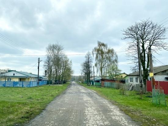 Коты и дети: чем жив поселок Правда в Тульской области