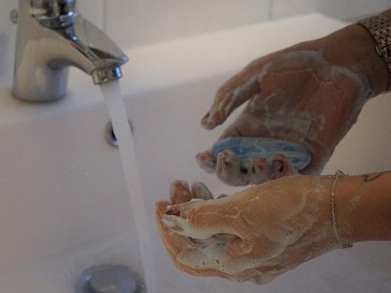 Роспотребназдор предупредил об эпидемии норонавируса