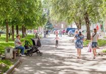 До 22 градусов прогреется воздух в Псковской области 14 мая
