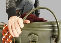 В Тверской области нашли похитителя сумки