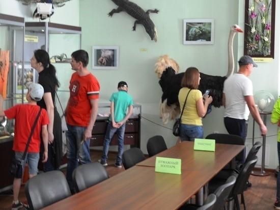 Киров присоедится к акции «Ночь музеев-2021»