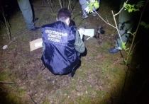Сайт главка СКР по Нижегородской области сообщил об обнаружении в лесополосе возле поселка Козино Балахнинского района тела убитой 12-летней девочки