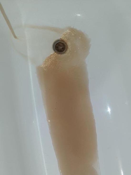 «Вода грязнее грязи»: жители Ноябрьска жалуются на идущий из кранов «персиковый сок»