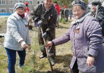 В Комсомольском районе Хабаровского края появились два «Сада памяти»