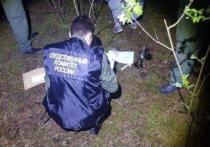В Нижегородской области продолжаются поиски убийцы 12-летней девочки, тело которой было найдено в районе поселка Большое Козино Балахнинского района