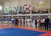 В Псковской области стартовал Всероссийский турнир по тхэквондо