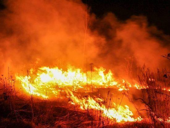 Жителям Серпухова рассказали о причинах лесных пожаров