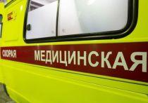 В Омской области за сутки от коронавируса умерли 2 человека