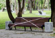 Нужны ли летом COVID-ограничения – мнение главврача псковской «инфекционки»