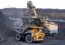 Руководство шахты возле кемеровской Лесной Поляны добилось через суд права на добычу угля