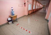 70 учеников псковских школ перевели на дистанционное обучение из-за COVID-19