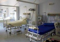 Великолучанка со 100-процентным поражением лёгких выздоровела и пришла работать в больницу