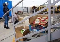Бизнесмены с гостинцами приехали в приют для бездомных животных в Яр-Сале