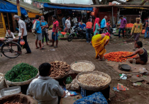 Число заболевших COVID-19 в Индии перевалило за 24 миллиона человек
