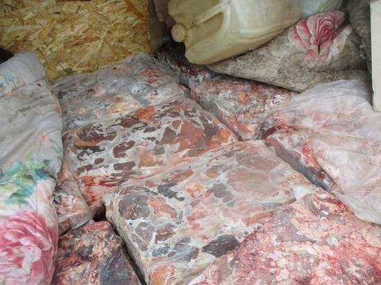 Около тонны говядины не пропустили через псковскую границу