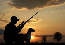 В Удмуртии нарушают правила охоты