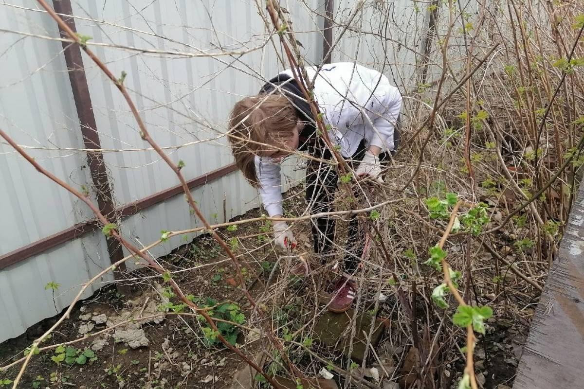 Костромские партийцы помогают ветеранам