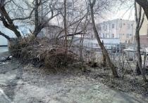 У омской мэрии и мусорного оператора произошёл конфликт из-за субботников