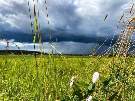 В выходные в Тверской области прогремит гроза