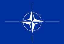 Украину и Белоруссию необходимо принять в НАТО, чтобы ликвидировать «серую зону», возникшую между Россией и странами Североатлантического альянса