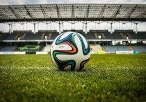 Сегодня, 15 мая, в 20:00 на стадионе «Труд» у футбольного клуба «Томь» состоится домашний поединок с «Нижним Новгородом»