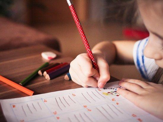 В Краснодарском крае порядка 90% школ охраняют казачьи организации