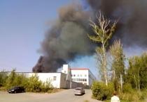 Крупный пожар в Челябинске напугал жителей города