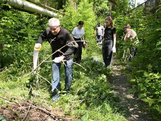 В Краснодаре по улице Зиповской планируют обустроить новую зелёную зону