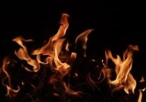 В Туле на улице Ложевой днем 15 мая горела квартира