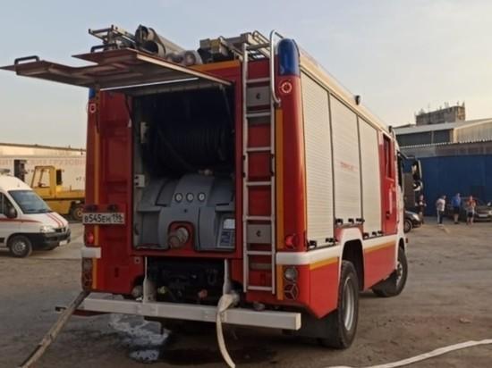 В Екатеринбурге загорелись пилорама и садовые дома